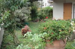 Villa singola con giardino!