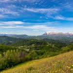 Le Marche regione