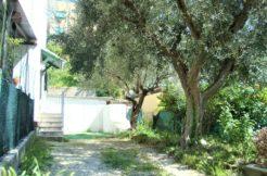 Appartamento con impianti nuovi, giardino e garage in piccola palazzina vicino al centro di Osimo
