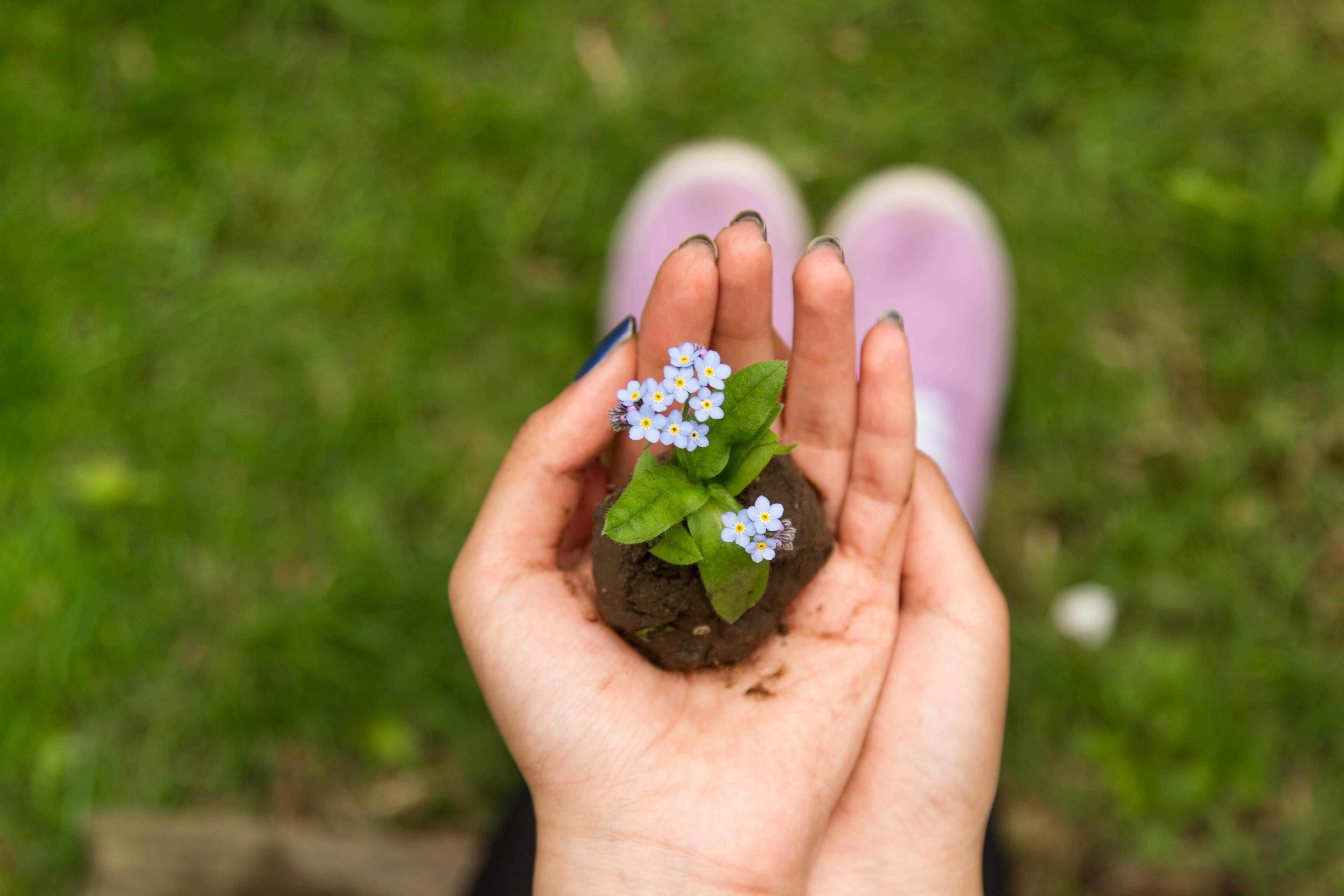 Arredare Un Giardino Idee come arredare il giardino: 5 idee fai da te originali e a
