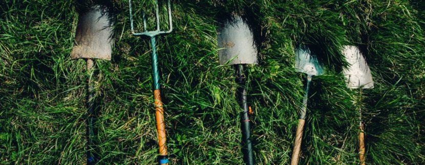 Quali sono i lavori da fare in giardino a marzo